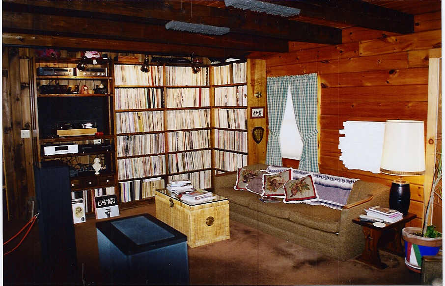 On the wall -- Ikea Lerberg CD/DVD storage racks ...